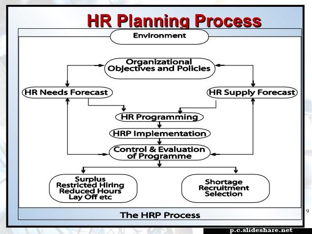 Hrm Planning Iils Blog